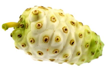 Beneficios del Jugo de Noni Natural